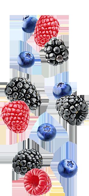 Falling fruit border for Naked Foods